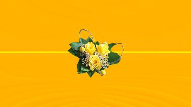 carte cadeau 11